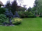 Четкое-зонирование-сада